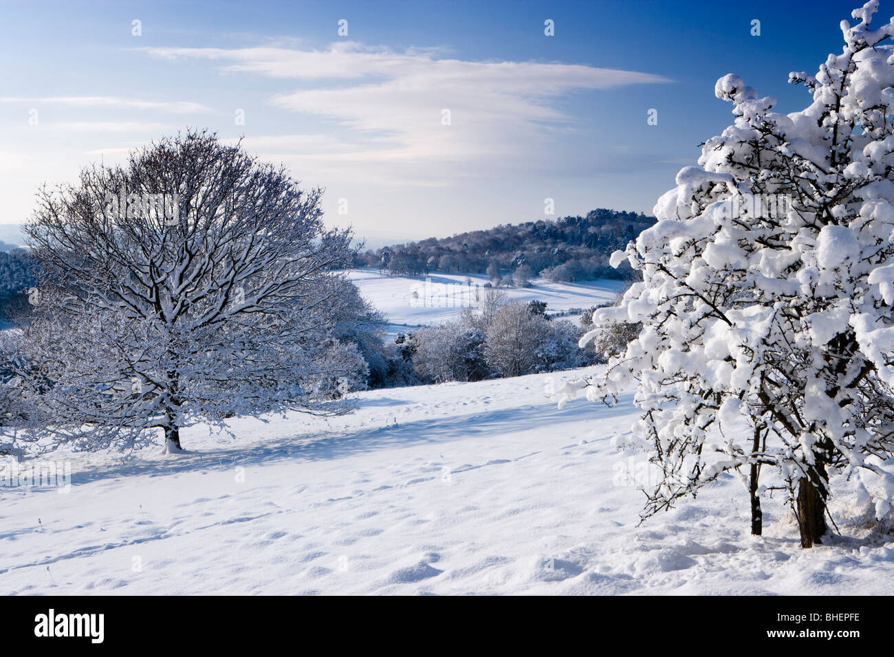 Inverno a Newlands Corner vicino a Guildford, Surrey, Regno Unito. Foto Stock
