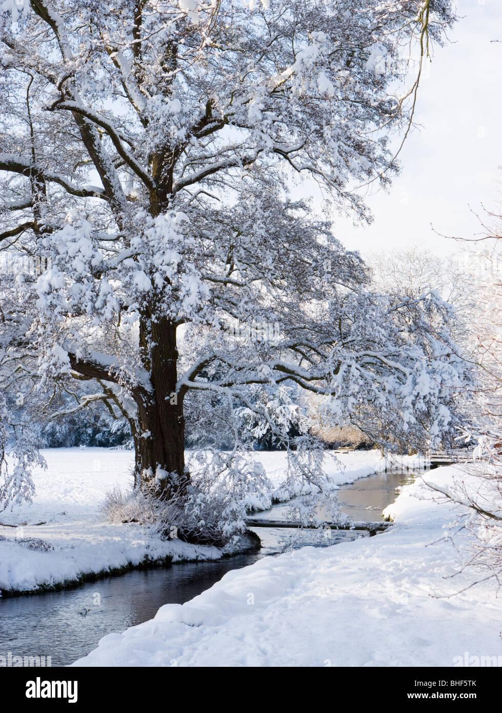 Inverno a Abinger martello, Surrey, Regno Unito. Tilling Bourne. Immagini Stock