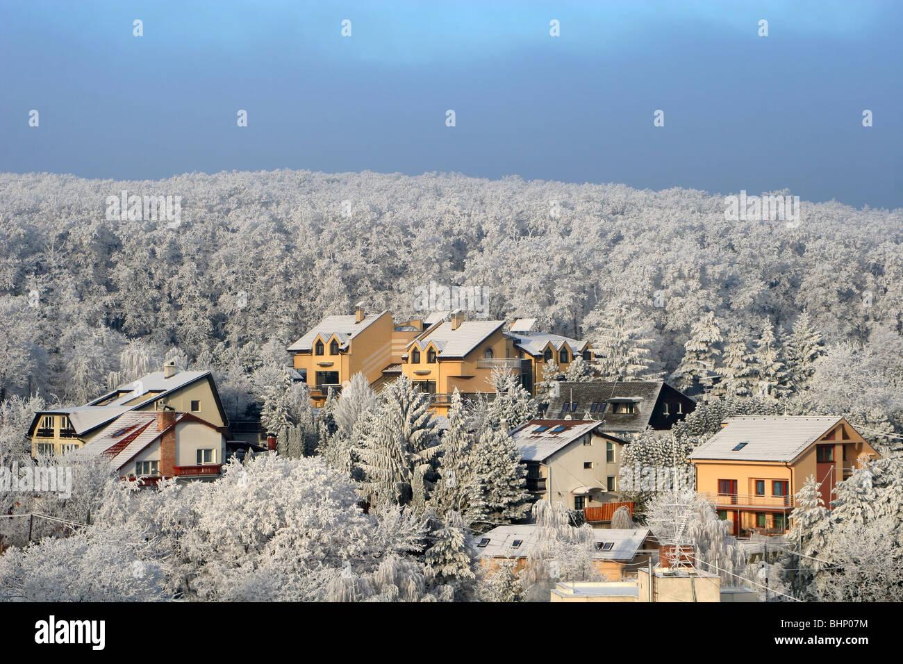 Case in inverno dalla foresta Immagini Stock