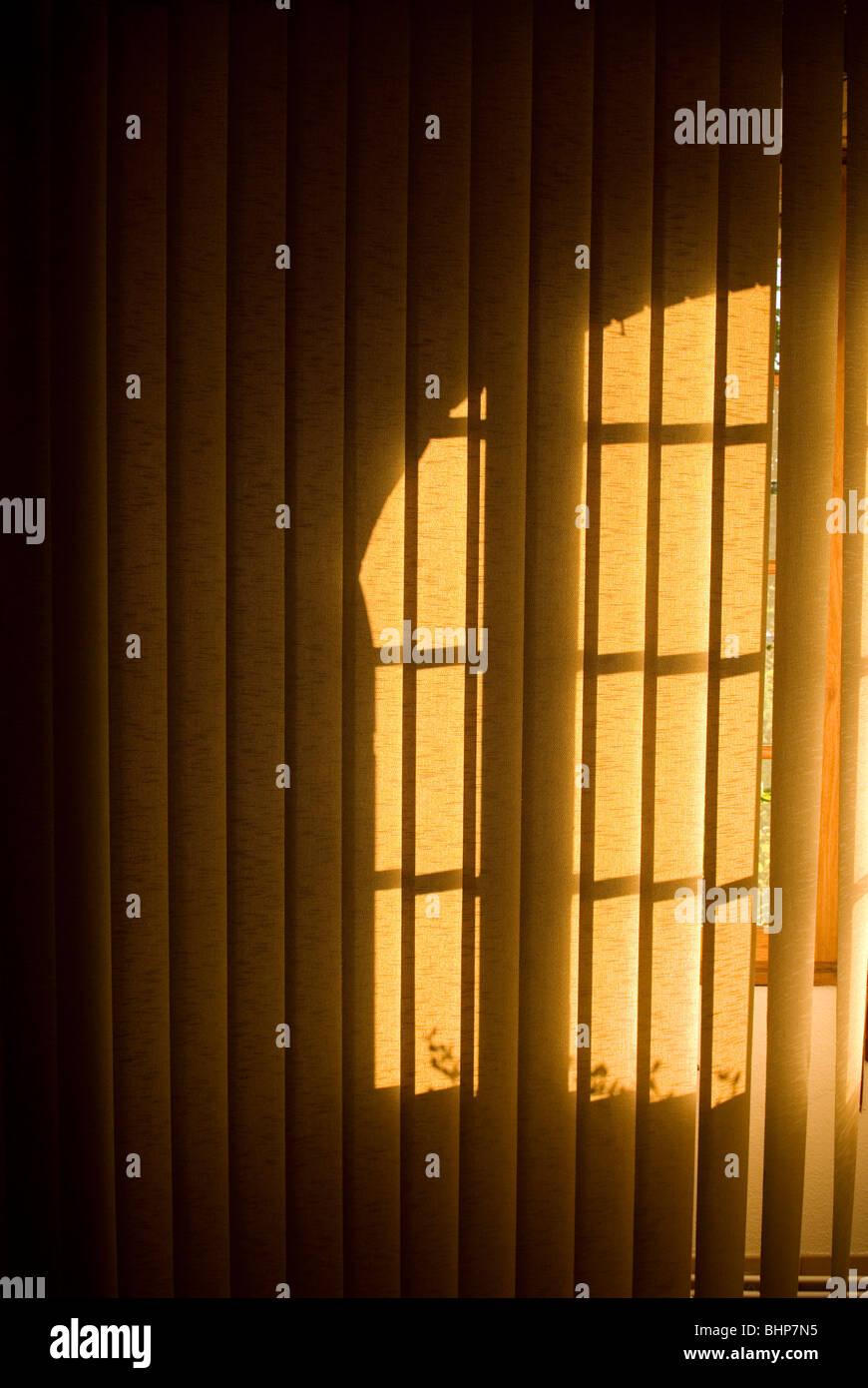 Un moody immagine di una finestra di ombre in caduta sul Appendere verticale persiane Immagini Stock