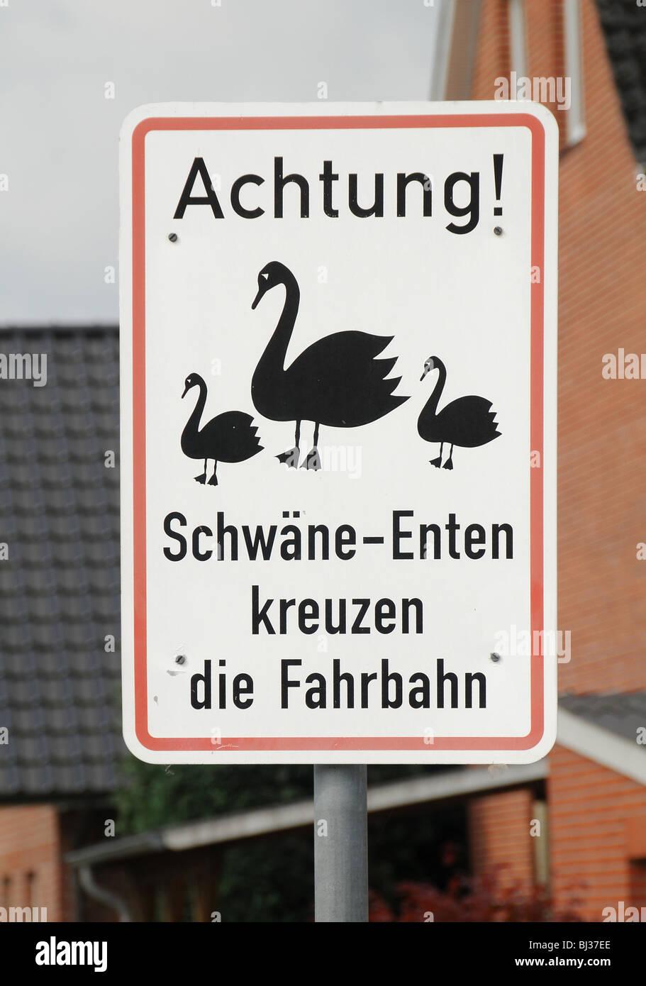 Strada strada segno in Stade, Amburgo, Germania, avvertimento contro i cigni e anatre attraversando la strada Immagini Stock