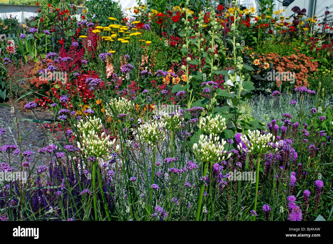 Un colorato fiore erbacee confine in un paese di lingua inglese giardino Foto Stock