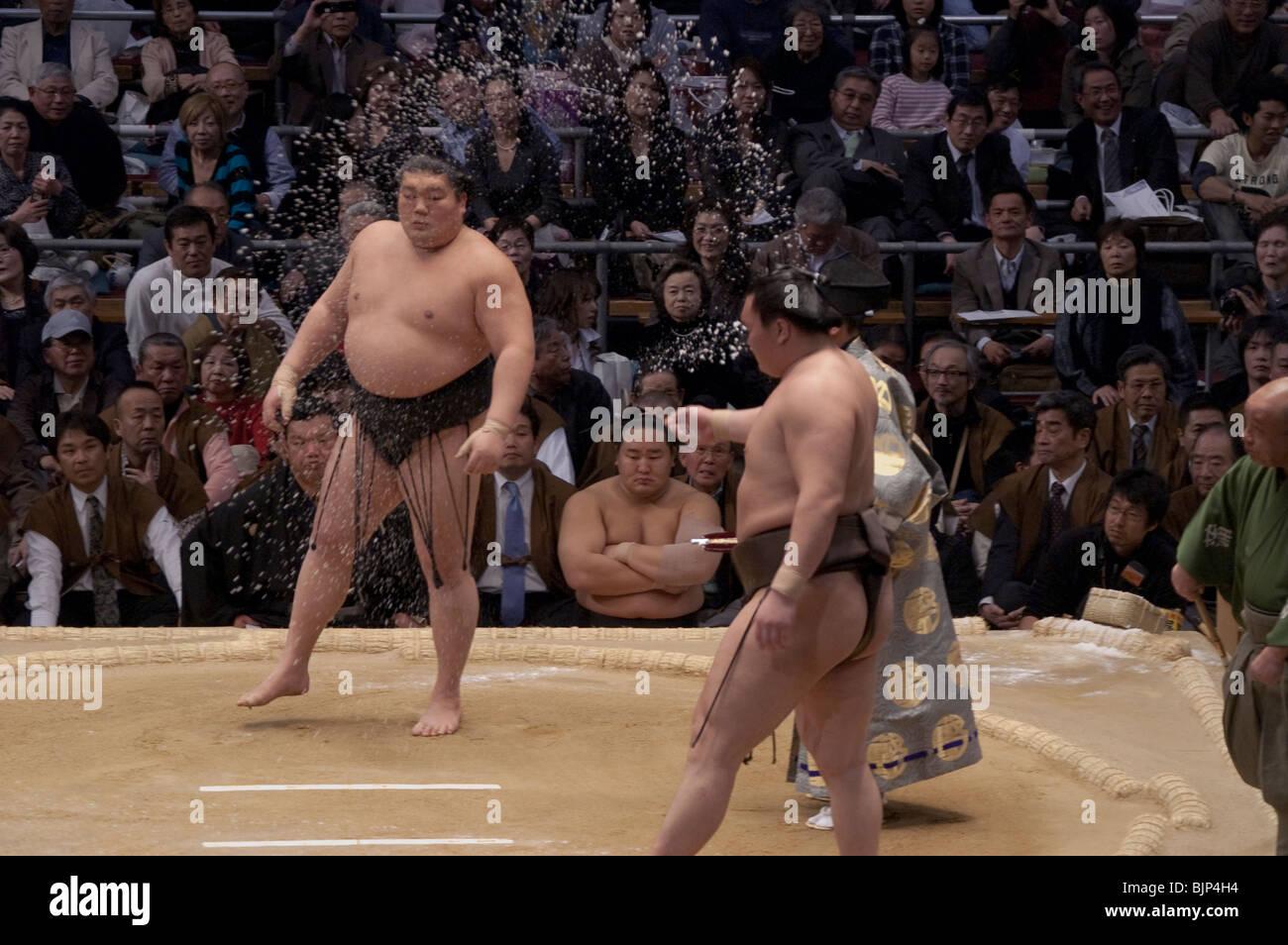 Hokutoriki guarda in alto si è classificato il lottatore Hakuho davanti a loro bout a Osaka Torneo di Sumo, Giappone Foto Stock