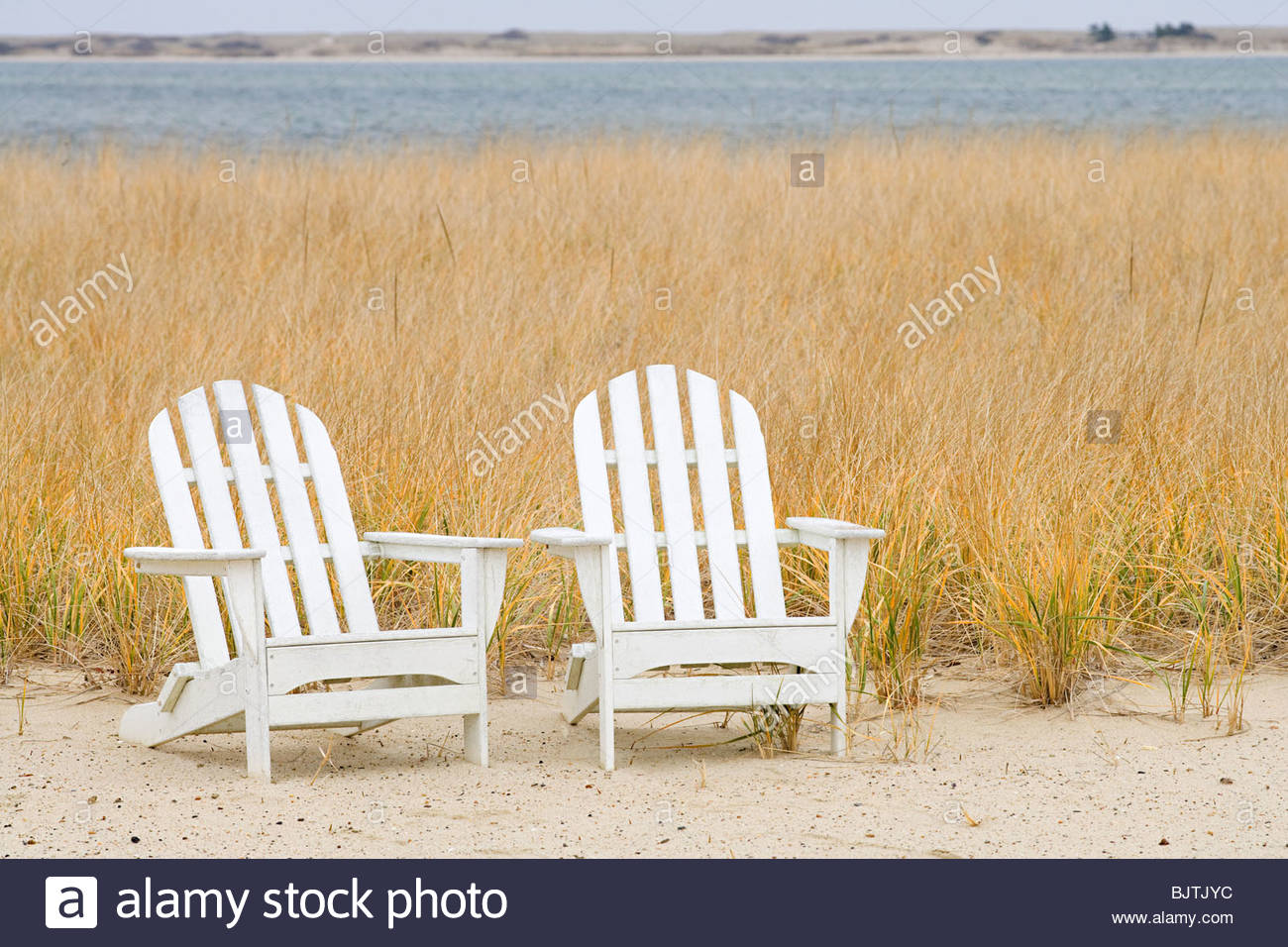 Due sedie a sdraio in riva al mare Immagini Stock