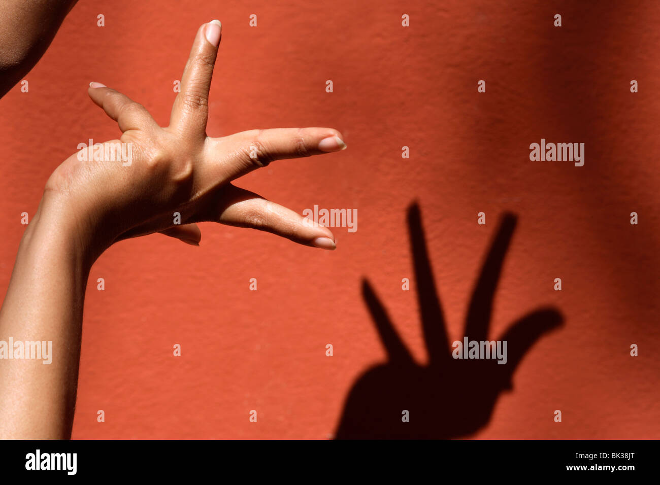 Close-up di mano e ombra di Ala Padma, una mano spostare, Odissi dance, India, Asia Immagini Stock