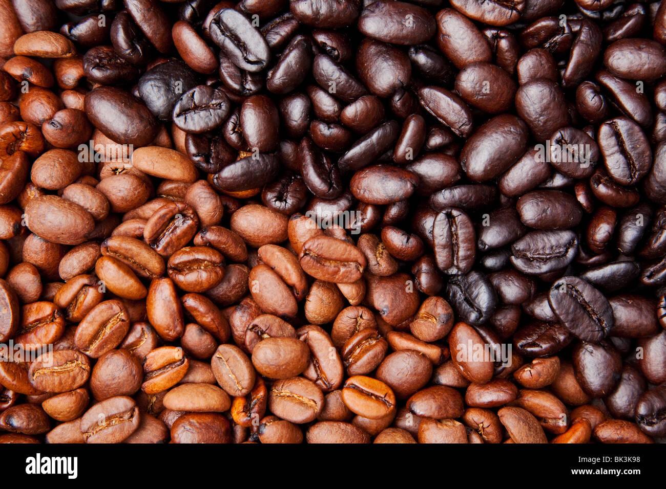 Chicco di caffè sfondo con luce e Dark Roast Immagini Stock