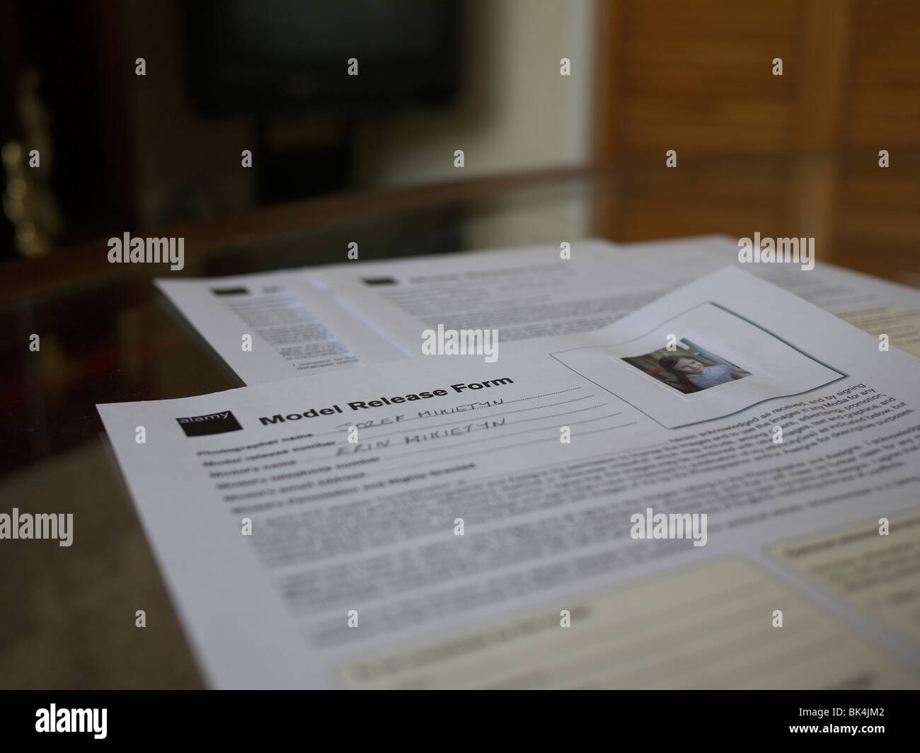 Modello di rilascio moduli. Immagini Stock