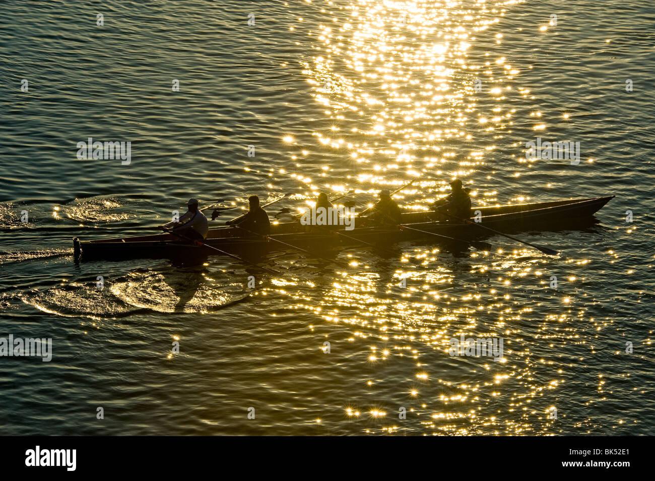 Rematore rower sculler fila sport a remi paddle paddling al tramonto tramonto della luce del sole soleggiato acqua Immagini Stock