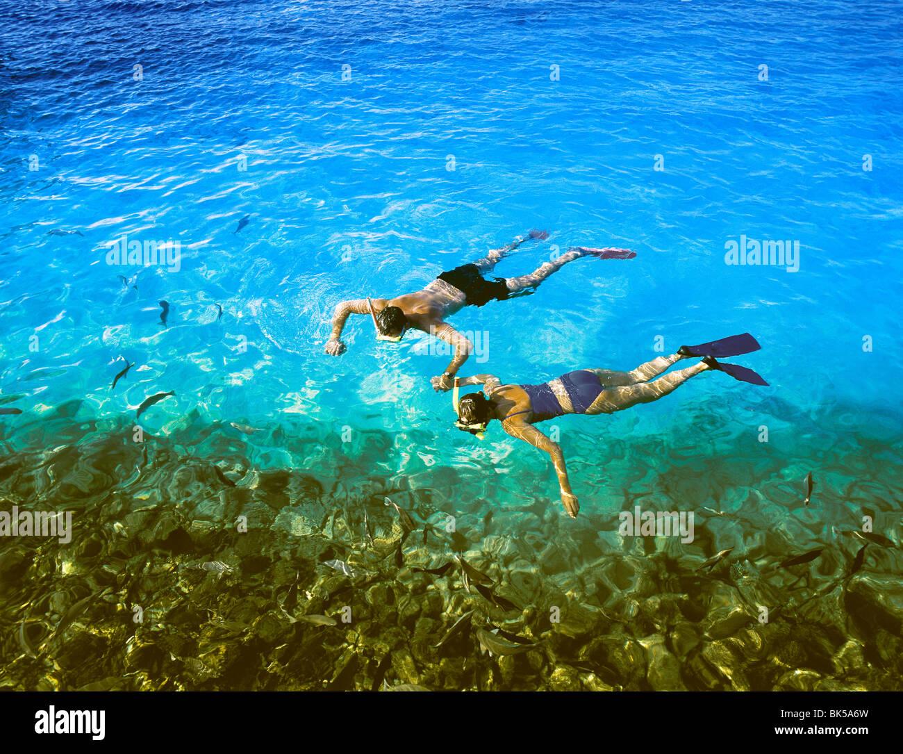 Giovane snorkeling, Maldive, Oceano Indiano, Asia Immagini Stock