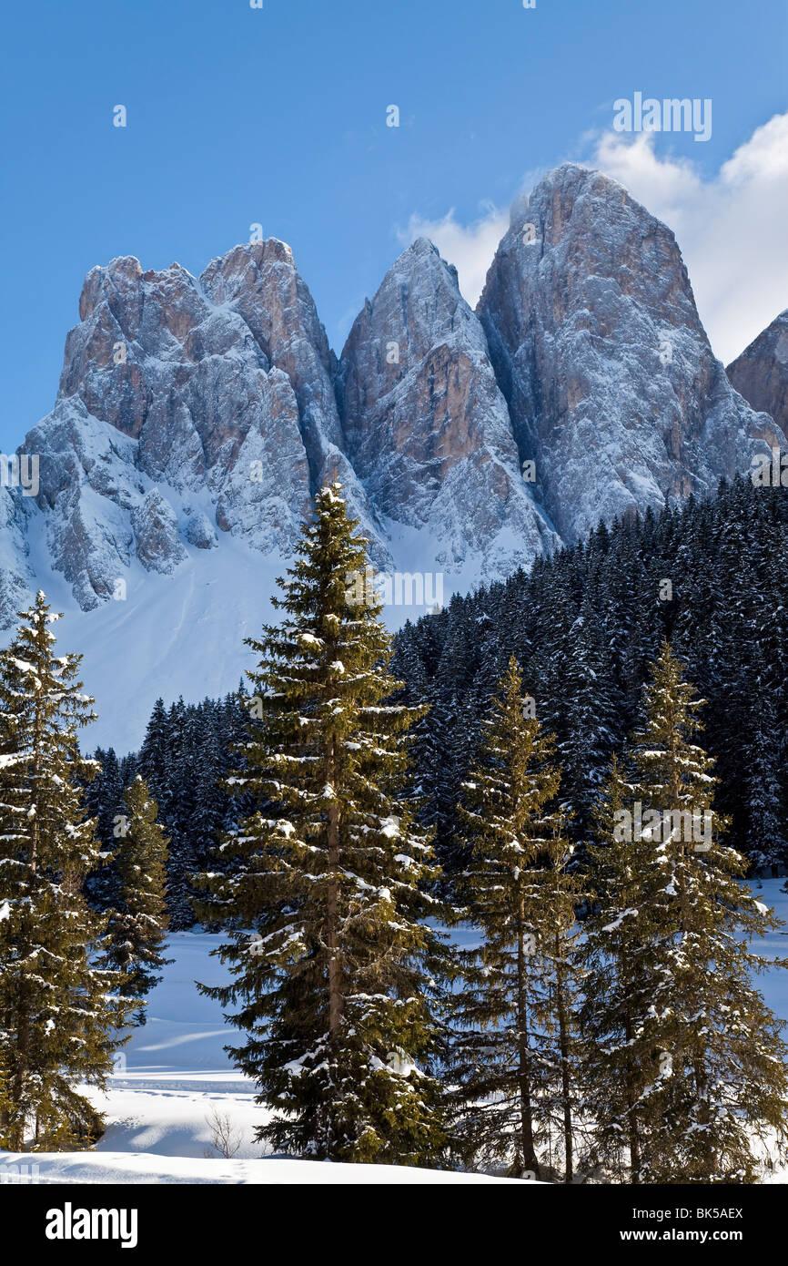 Paesaggio invernale, le Odle Gruppo con Geisler Spitzen, 3060m, Val di Funes, Dolomiti, Trentino-Alto Adige, Sud Immagini Stock