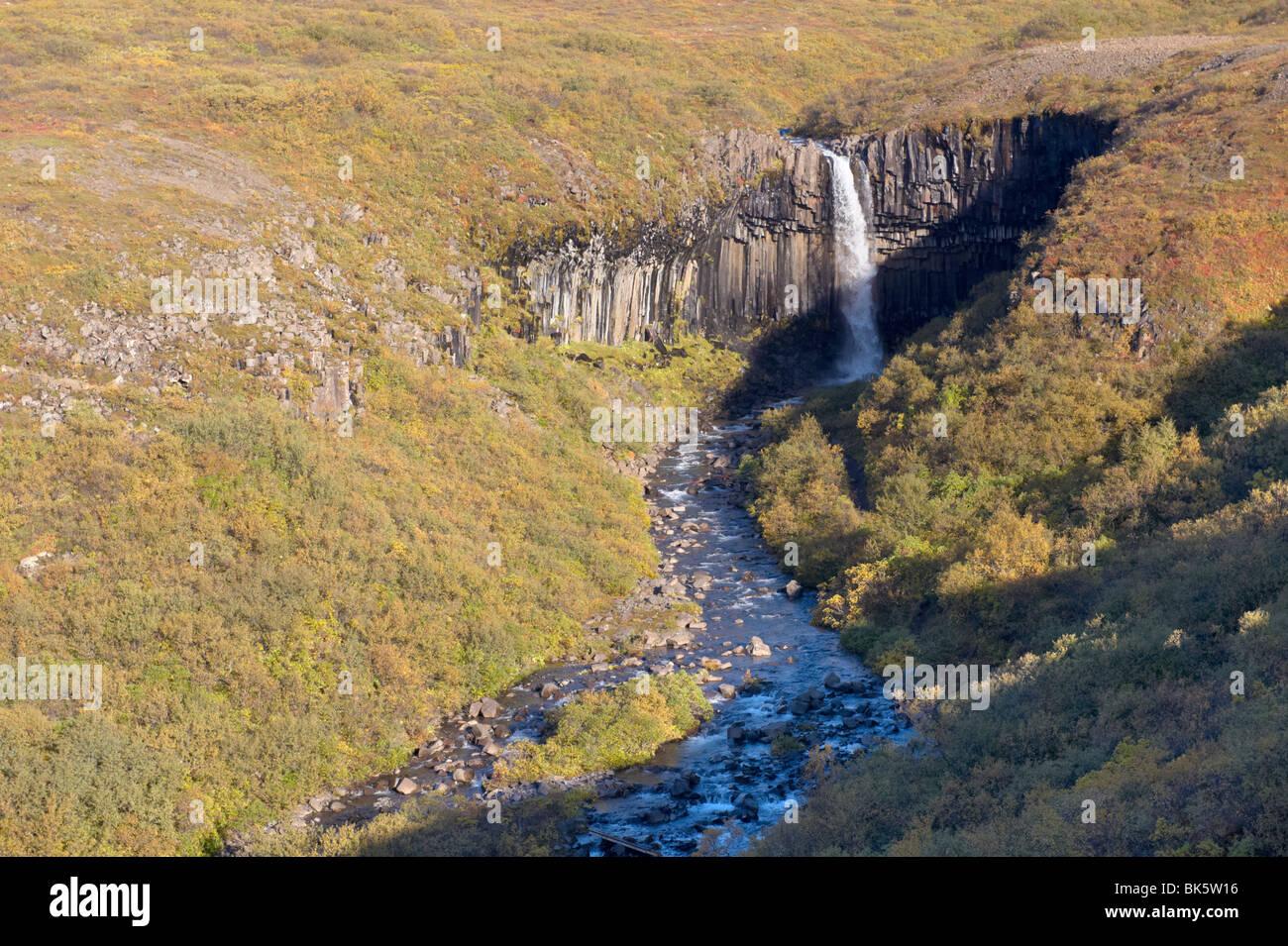 Svartifoss (nero cade) a cascata, con sovrastante basalto nero colonne, Skaftafell National Park, Islanda, regioni Foto Stock