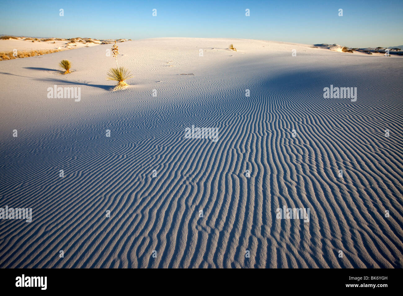 White Sands National Monument, Nuovo Messico Immagini Stock