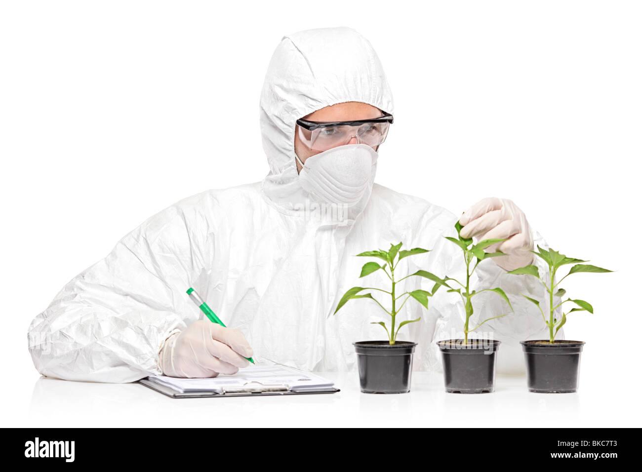 Un uomo in uniforme di esame di un impianto di pepe e la scrittura di note Immagini Stock