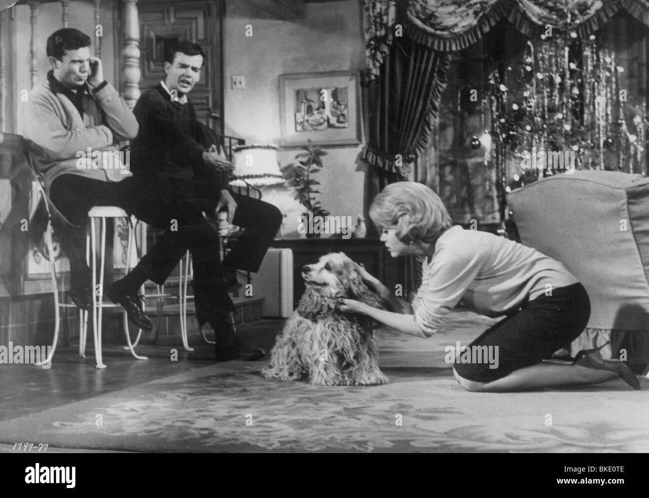 Periodo di regolazione (1962) Jane Fonda POFA 006FOH Immagini Stock