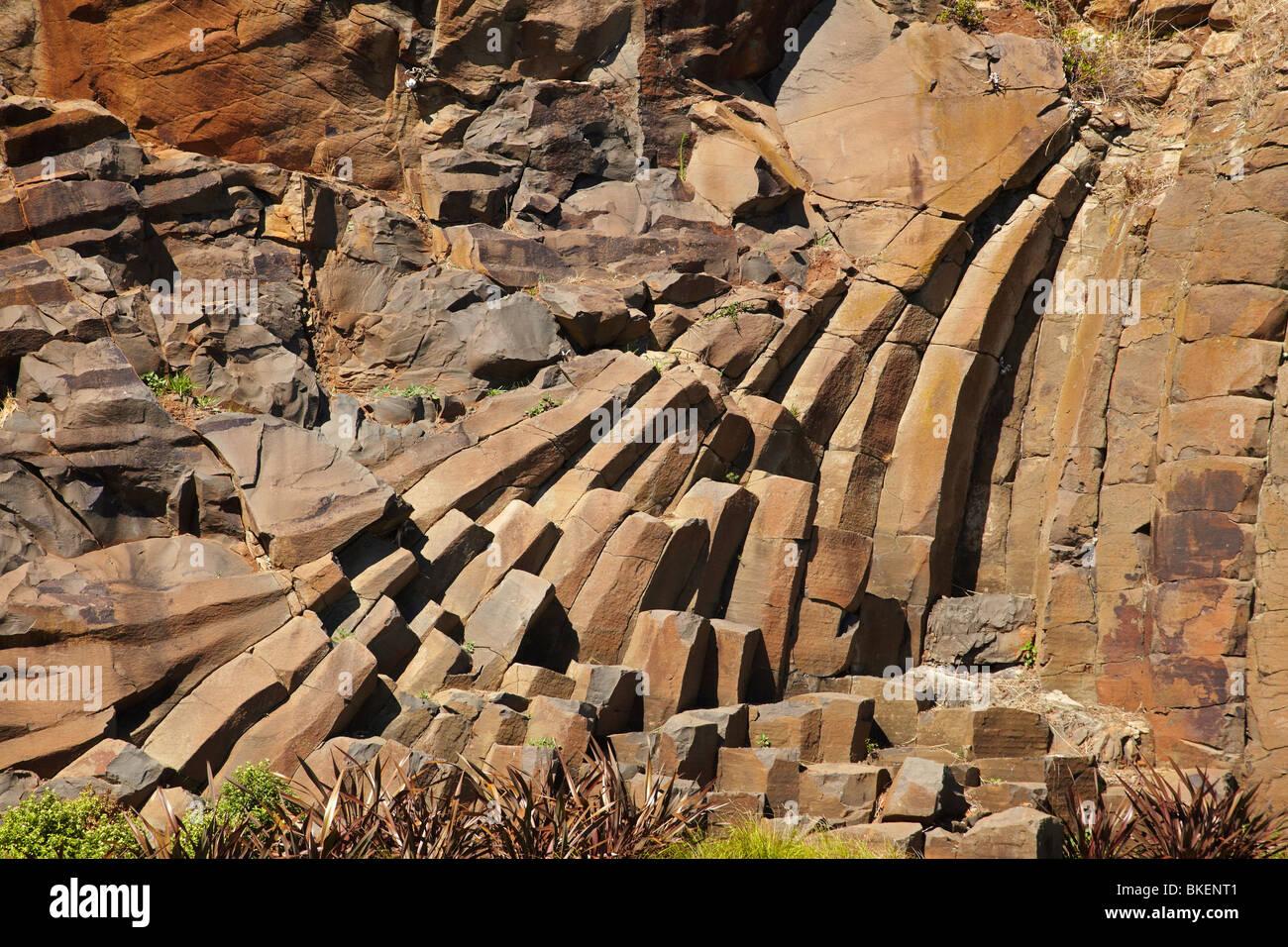 Insolite formazioni di roccia, terrazzo marino, Burnie, nel nord della Tasmania, Australia Immagini Stock