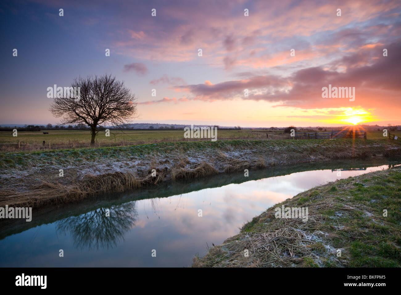 Alba sul fiume Brue sui livelli di Somerset, Glastonbury, Somerset, Inghilterra. Inverno (febbraio 2010). Immagini Stock