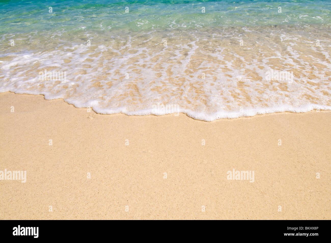 Un'onda rompe sulla sabbia Immagini Stock