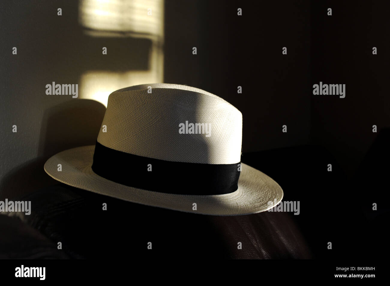 Cappello di Panama in luce e ombra Foto   Immagine Stock  29315121 ... 0688779740b7