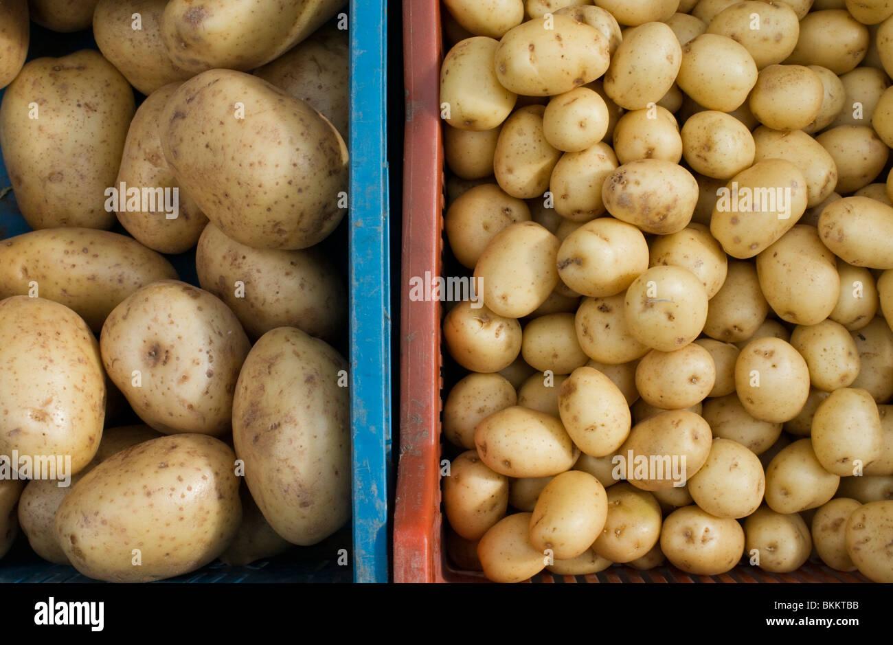 Gran cottura patate e piccolo nuovo o insalata di patate a vendere in un mercato, UK. Immagini Stock