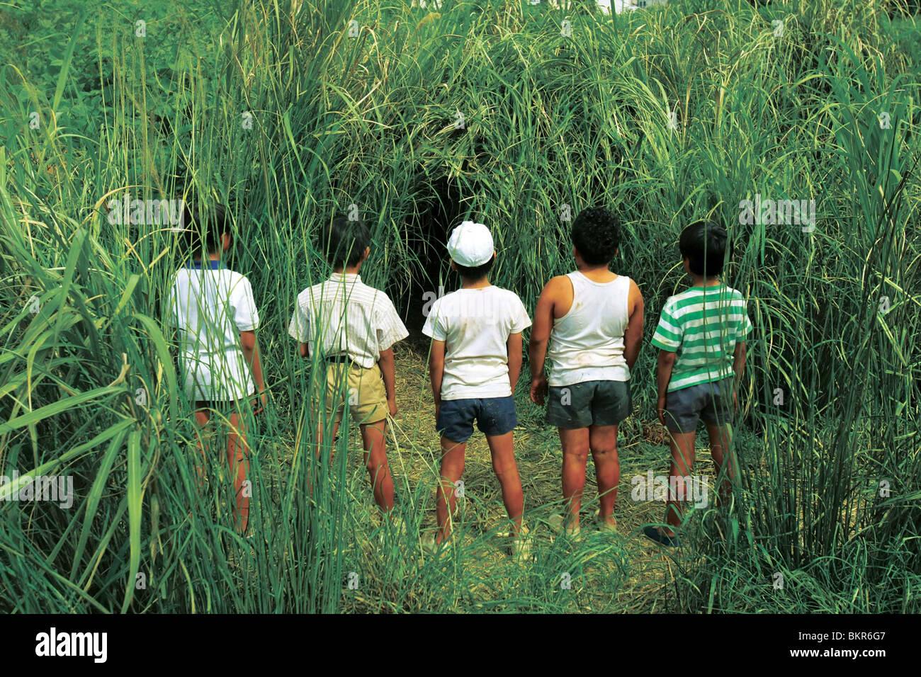20-SEIKI SHONEN (2008) 20esimo secolo per i ragazzi (ALT) YUKIHIKO TSUTSUMI (DIR) 001 Immagini Stock