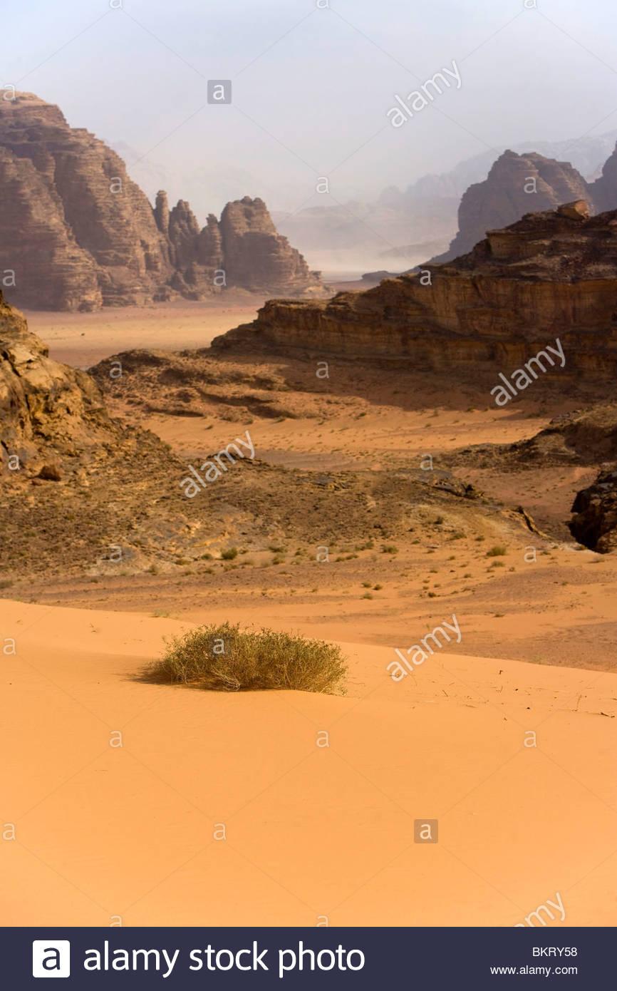 Wadi Rum,Giordania,Medio Oriente,Asia Foto Stock