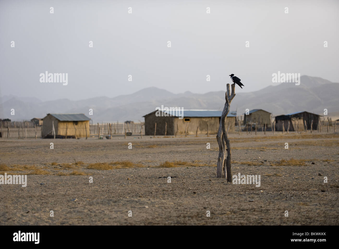 Purros vilage, Kaokoland, regione di Kunene, Namibia. Foto Stock