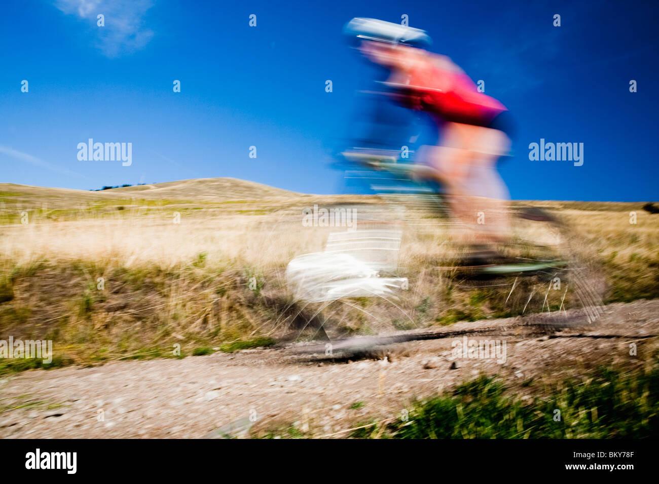 Una femmina di mountain biker pedali il sentiero di Mt. Sentinella, Missoula, Montana. Immagini Stock