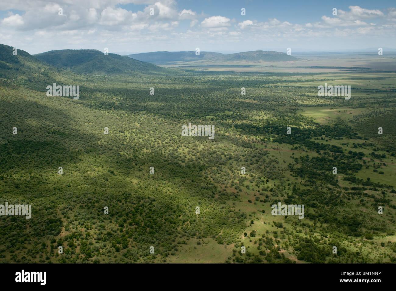 Riserva Nazionale di Masai Mara, Kenya, Africa orientale, Africa Immagini Stock