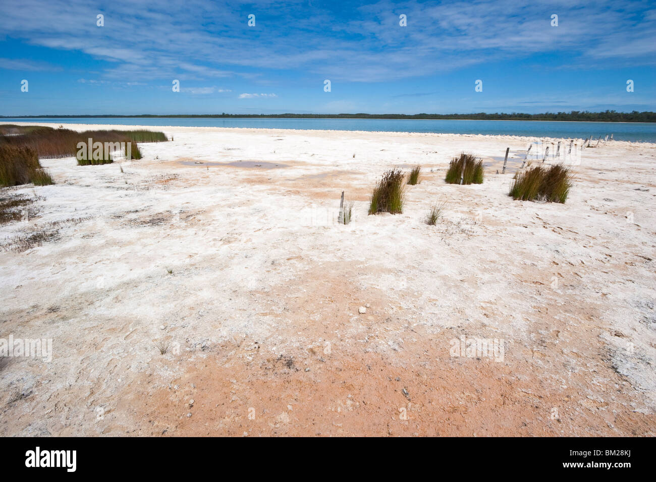 Sale e depositi di alghe in riva al lago di Clifton, Yalgorup National Park, Mandurah, Australia occidentale Immagini Stock