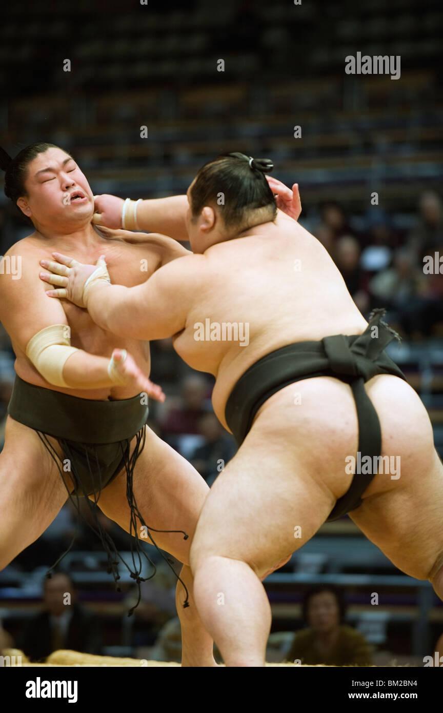 Fukuoka Sumo concorrenza, Kyushu Basho, citta' di Fukuoka, Kyushu, Giappone Foto Stock