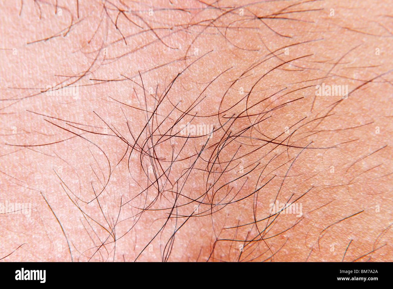 Close-up di pelle umana Immagini Stock