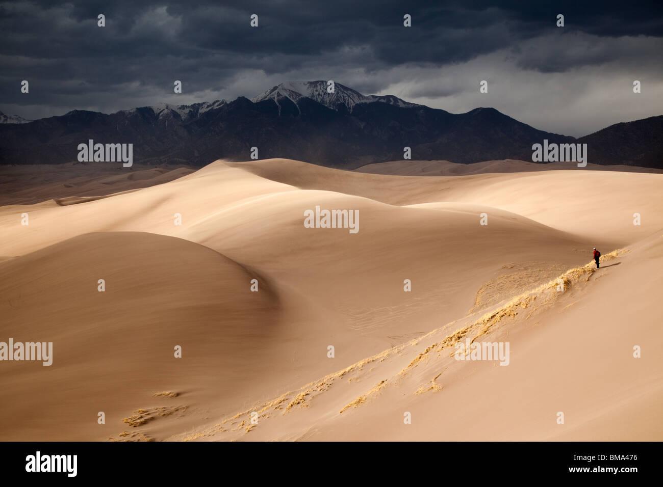 E Dunefield Sangre de Cristo Mountains, Great Sand Dunes National Park, COLORADO Foto Stock