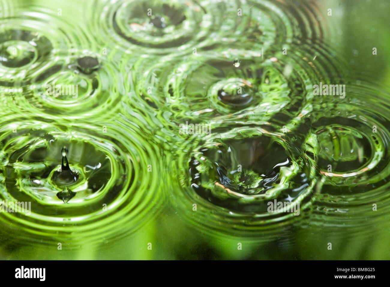 Gocce di pioggia su acqua Immagini Stock