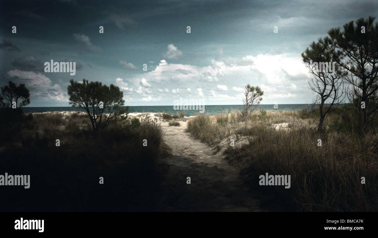 Spiaggia, percorso sentier,plage, playa, sky, il cielo, il ciel Immagini Stock