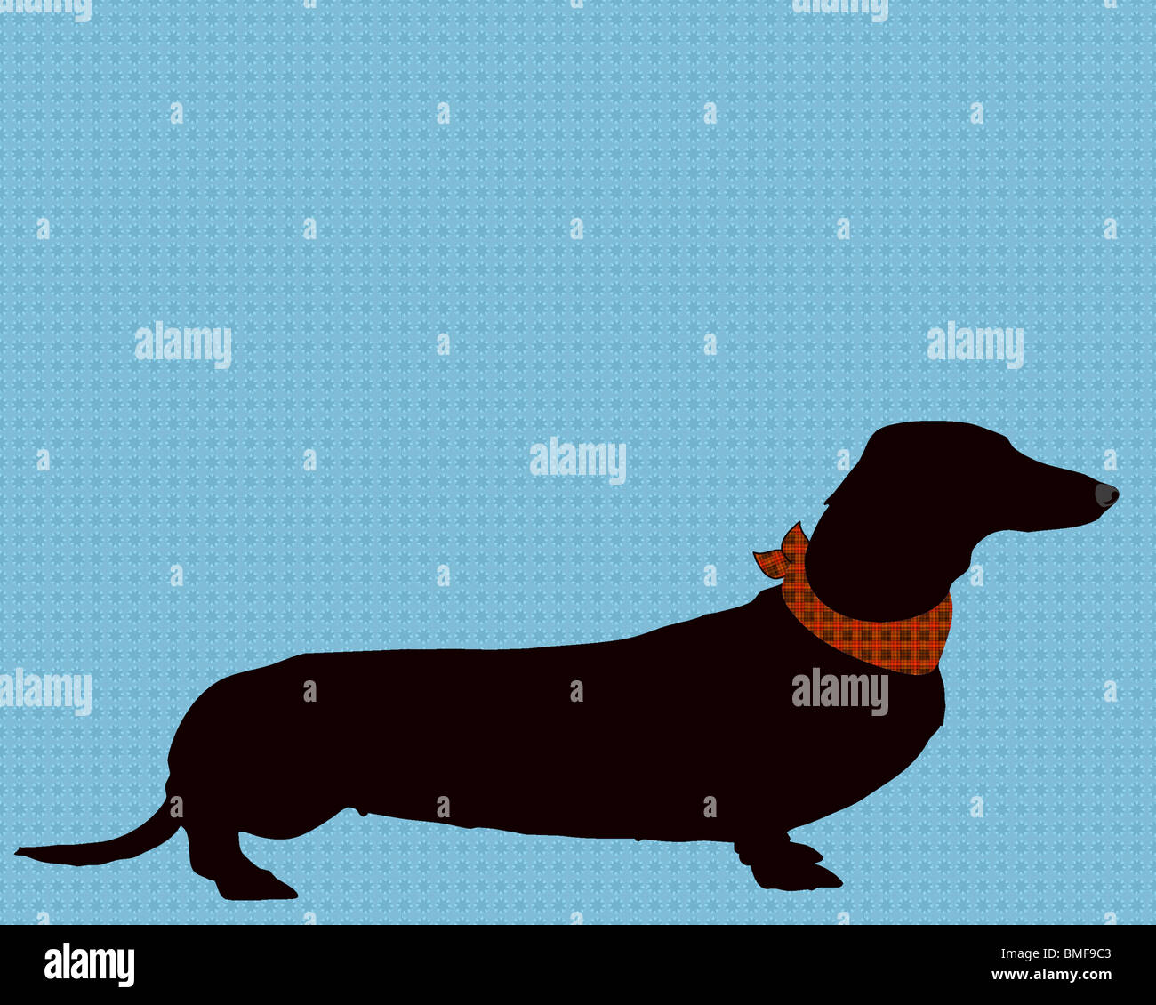 Arte, illustrazione, stampa bassotto, cane, pet, animale, pet lover, amante del cane, silhouette, animali domestici, Immagini Stock
