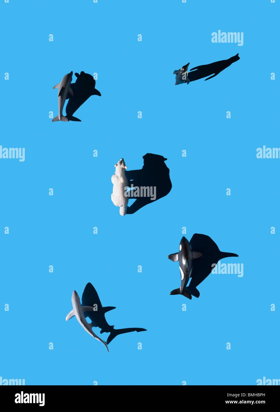 Animali marini e orso polare shot dal tettuccio Immagini Stock