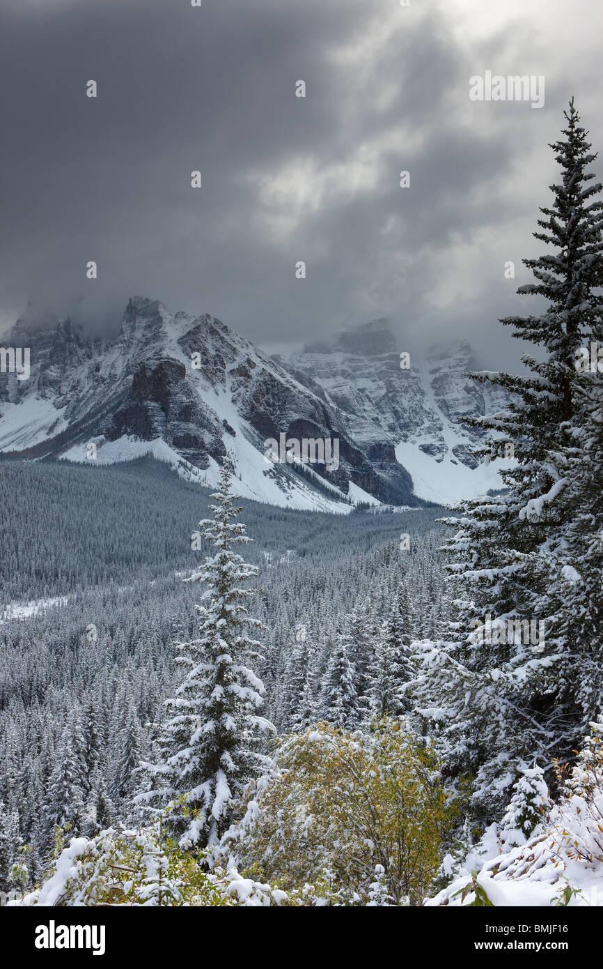 Una nevicata freash nella Valle dei Dieci Picchi, il Parco Nazionale di Banff, Alberta, Canada Immagini Stock