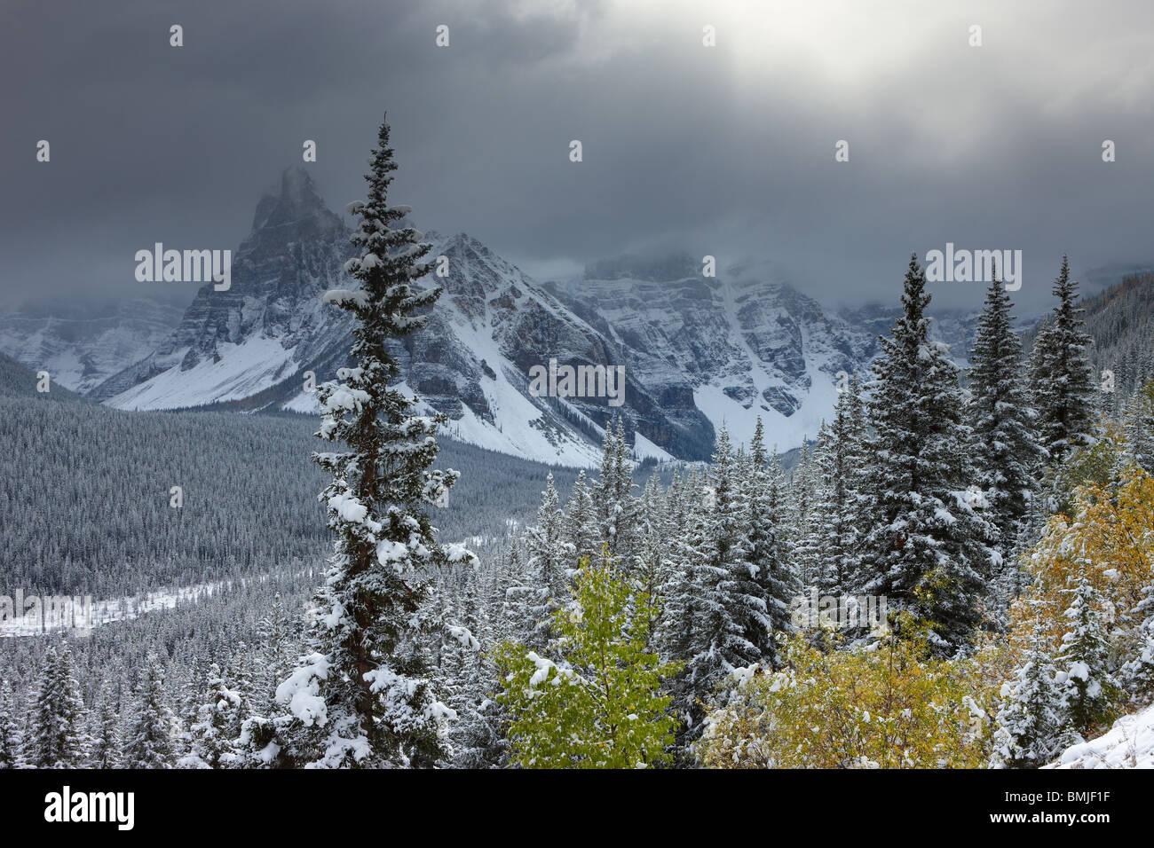Una leggera nevicata fresca nella Valle dei Dieci Picchi, il Parco Nazionale di Banff, Alberta, Canada Immagini Stock