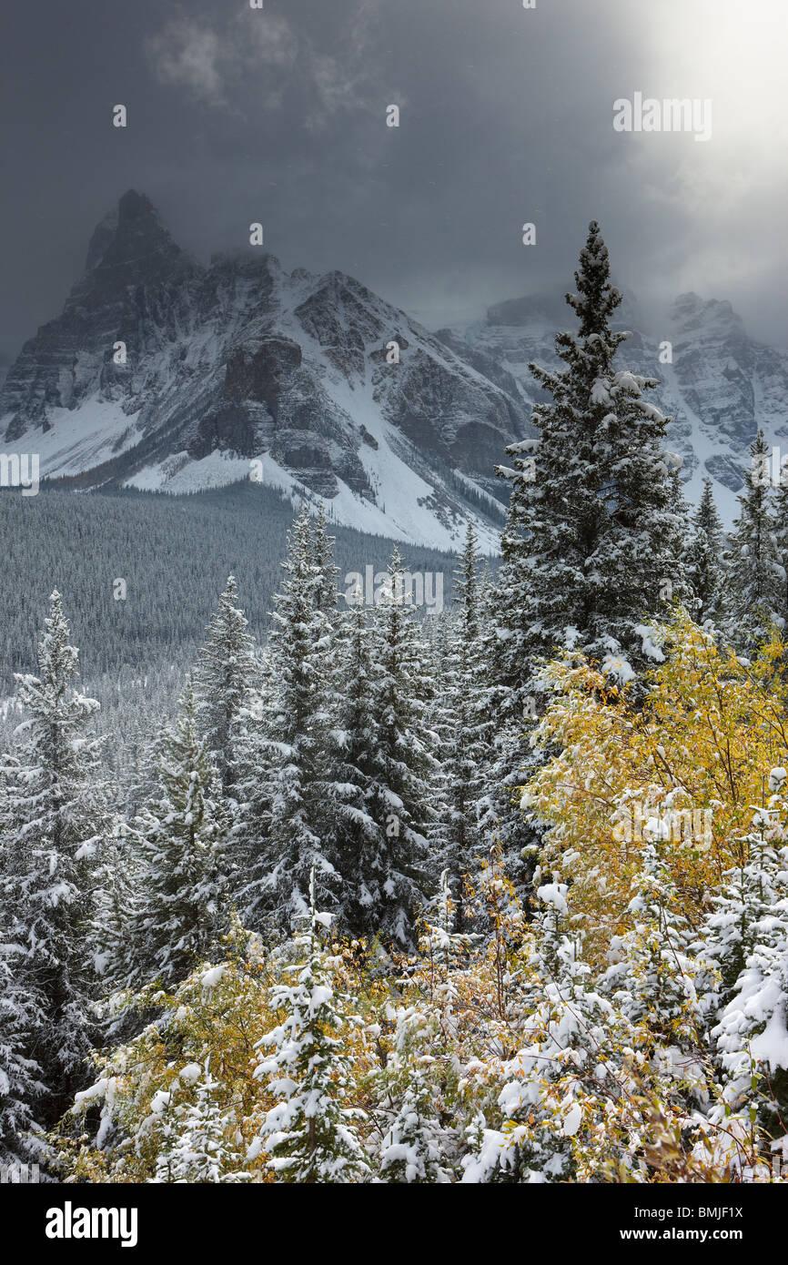 Inizio nevicata nella Valle dei Dieci Picchi, il Parco Nazionale di Banff, Alberta, Canada Immagini Stock