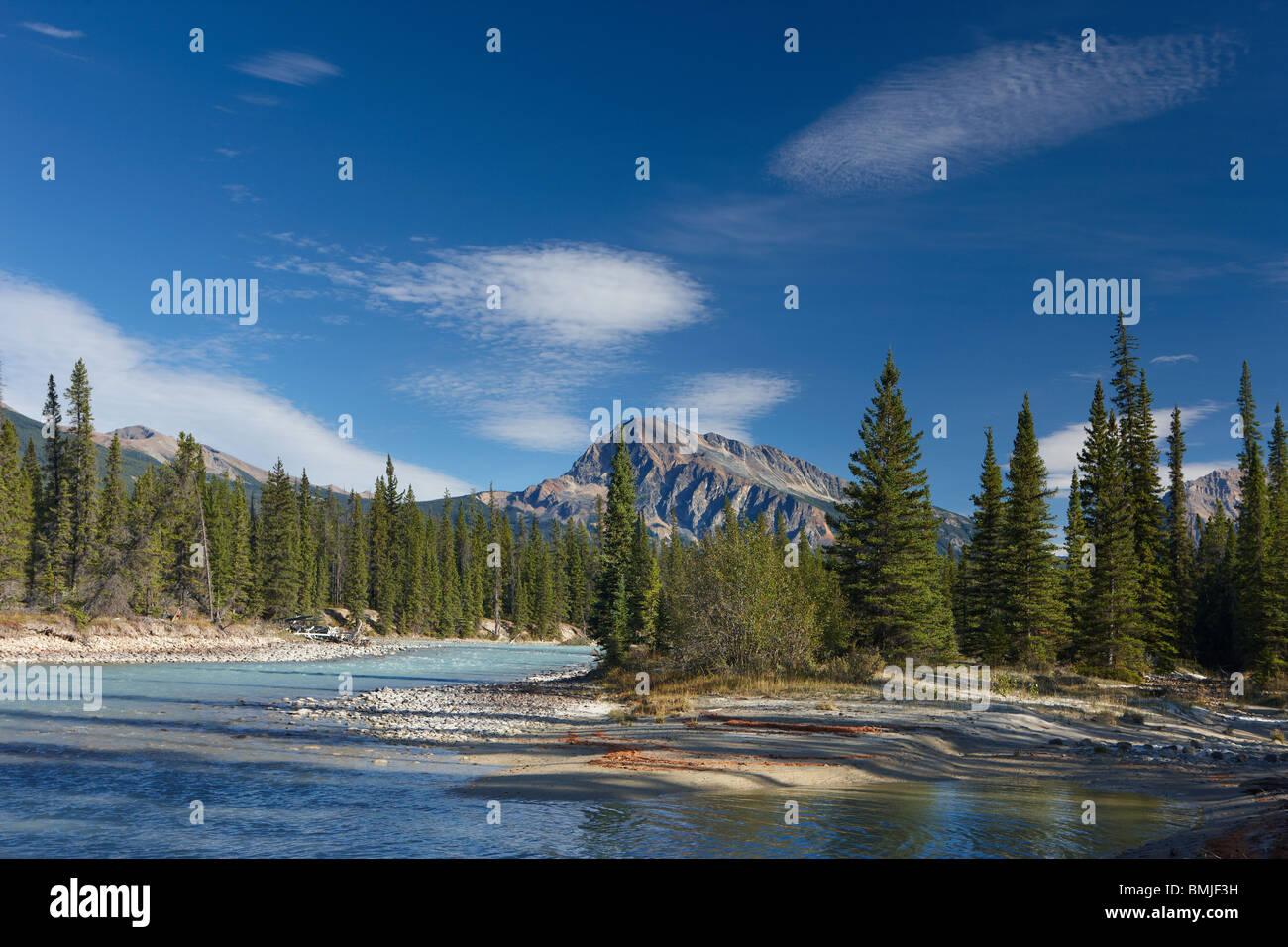 Il Fiume Athabasca presso Otto Cache del Parco Nazionale di Jasper, Alberta, Canada Immagini Stock