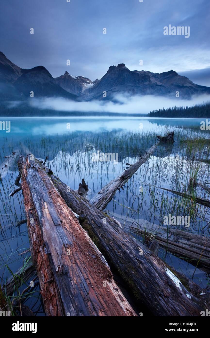 Il Lago di Smeraldo all'alba con i picchi del Presidente vanno ben oltre, Parco Nazionale di Yoho, British Columbia, Immagini Stock