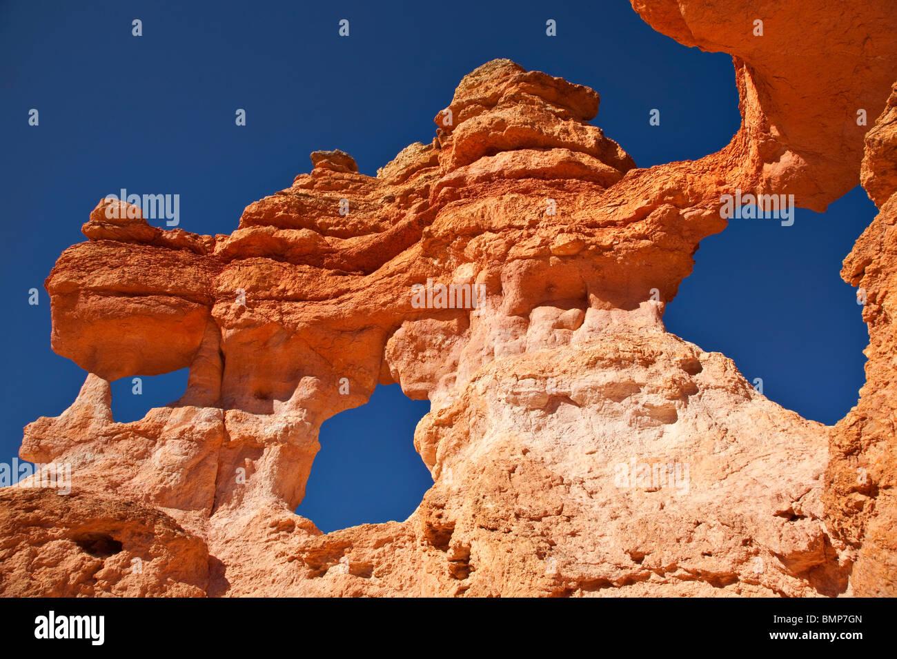 Hoodoos di eroso Claron formazione rocce al Parco Nazionale di Bryce Canyon, Utah, Stati Uniti d'America Immagini Stock