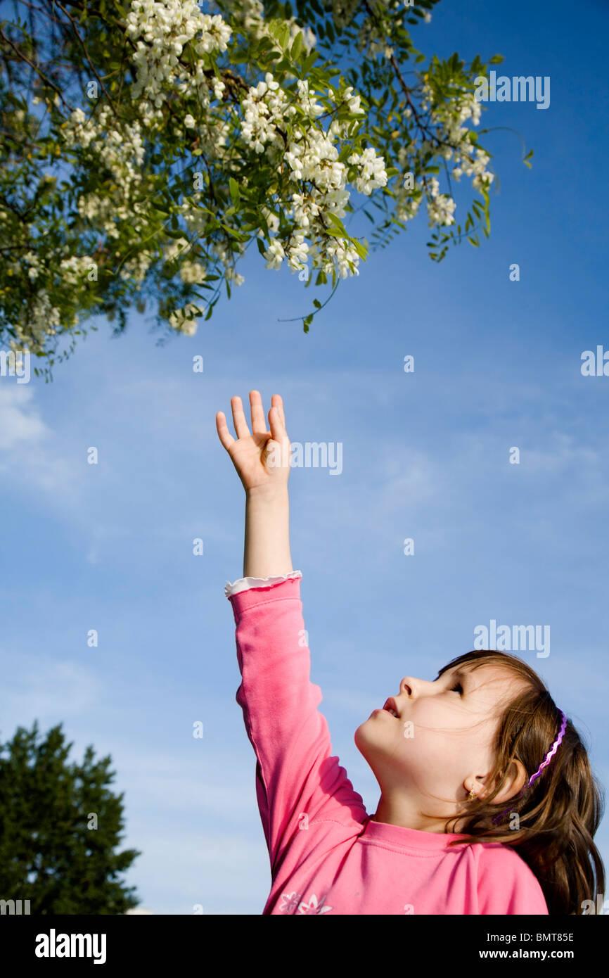 Bambina e i fiori di acacia Immagini Stock