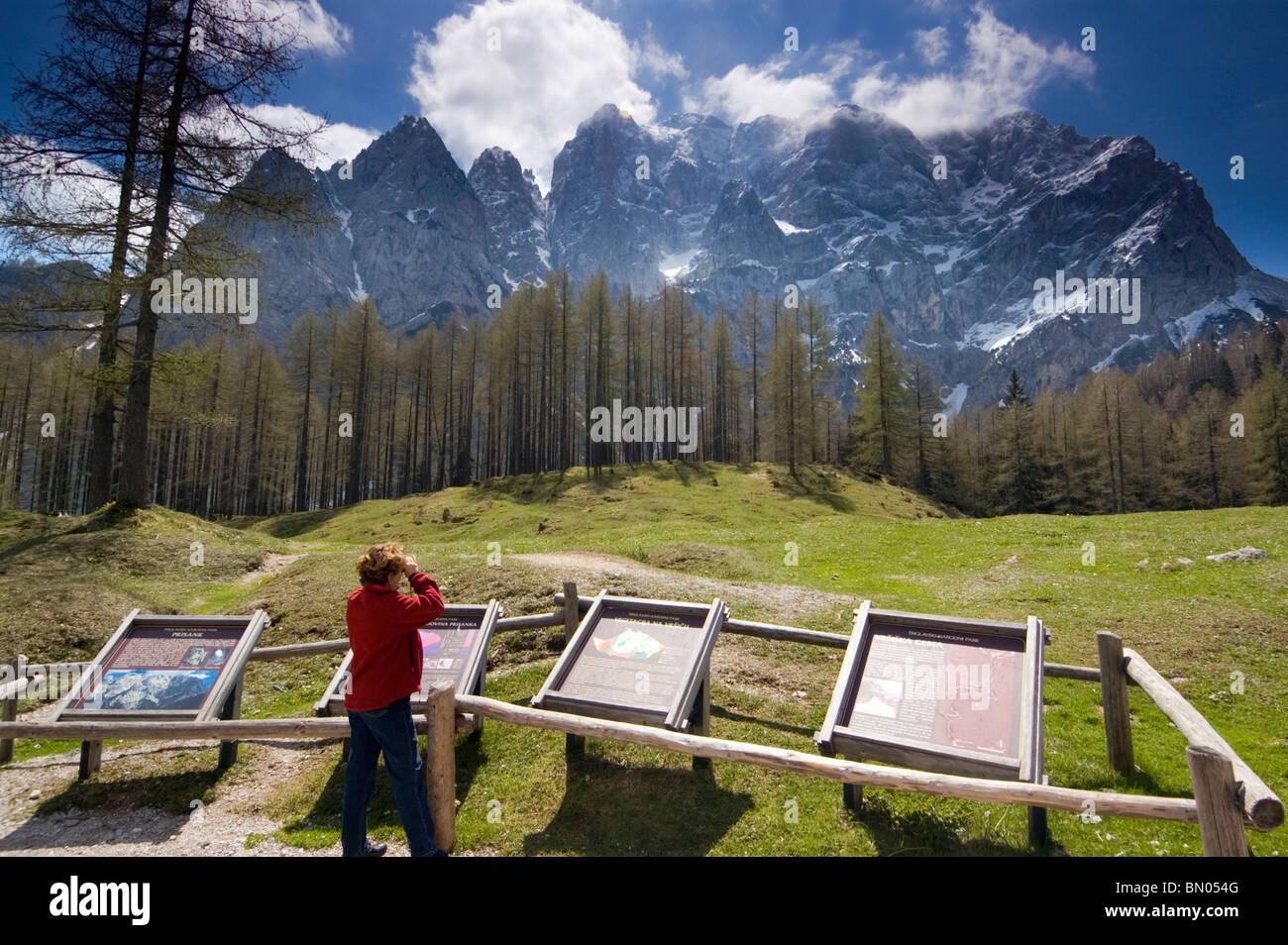 Elk191-2706 Slovenia, sulle Alpi Giulie, Triglav Parco Nat, visitatore (modello rilasciato) ammirando la vista sulla Immagini Stock