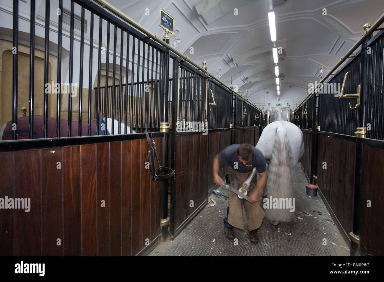 La Scuola Spagnola di equitazione maneggio a Vienna, Austria Immagini Stock