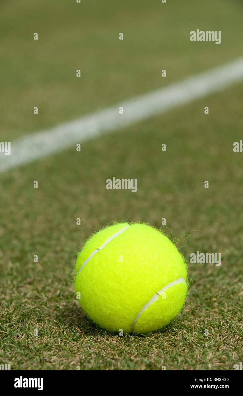 Una palla da tennis si siede su una corte di erba Immagini Stock