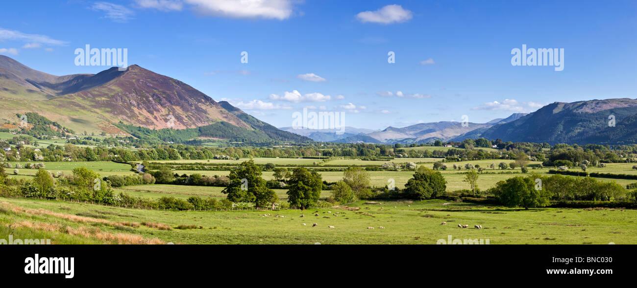 Parco Nazionale del Distretto dei Laghi, Cumbria, Regno Unito - Vista di central Lakeland fells, Skiddaw sulla sinistra, di fronte comune Bassenthwaite Foto Stock