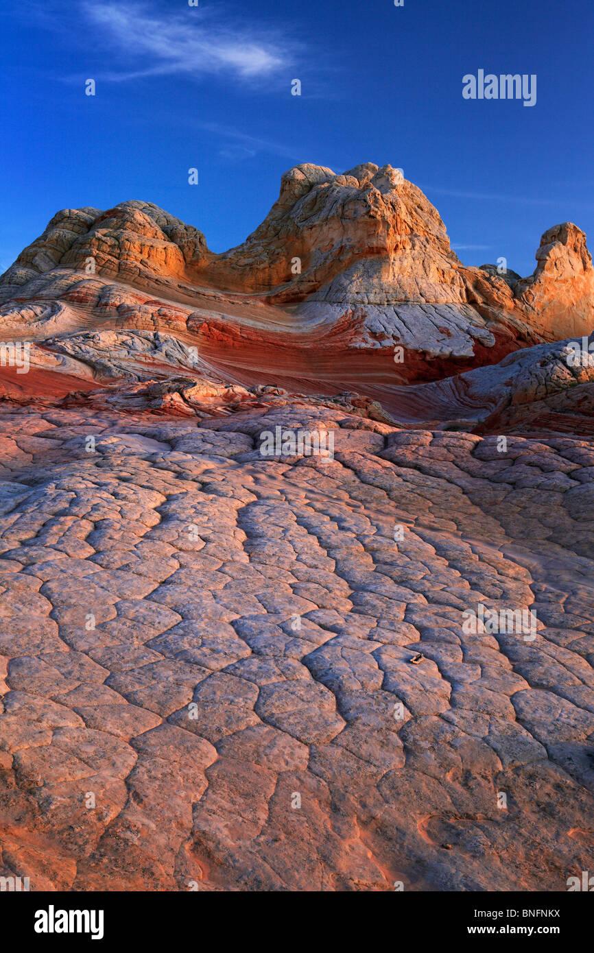 'Cervello' arenaria formazioni di roccia a 'White Pocket' in Vermiglio scogliere monumento nazionale, Immagini Stock