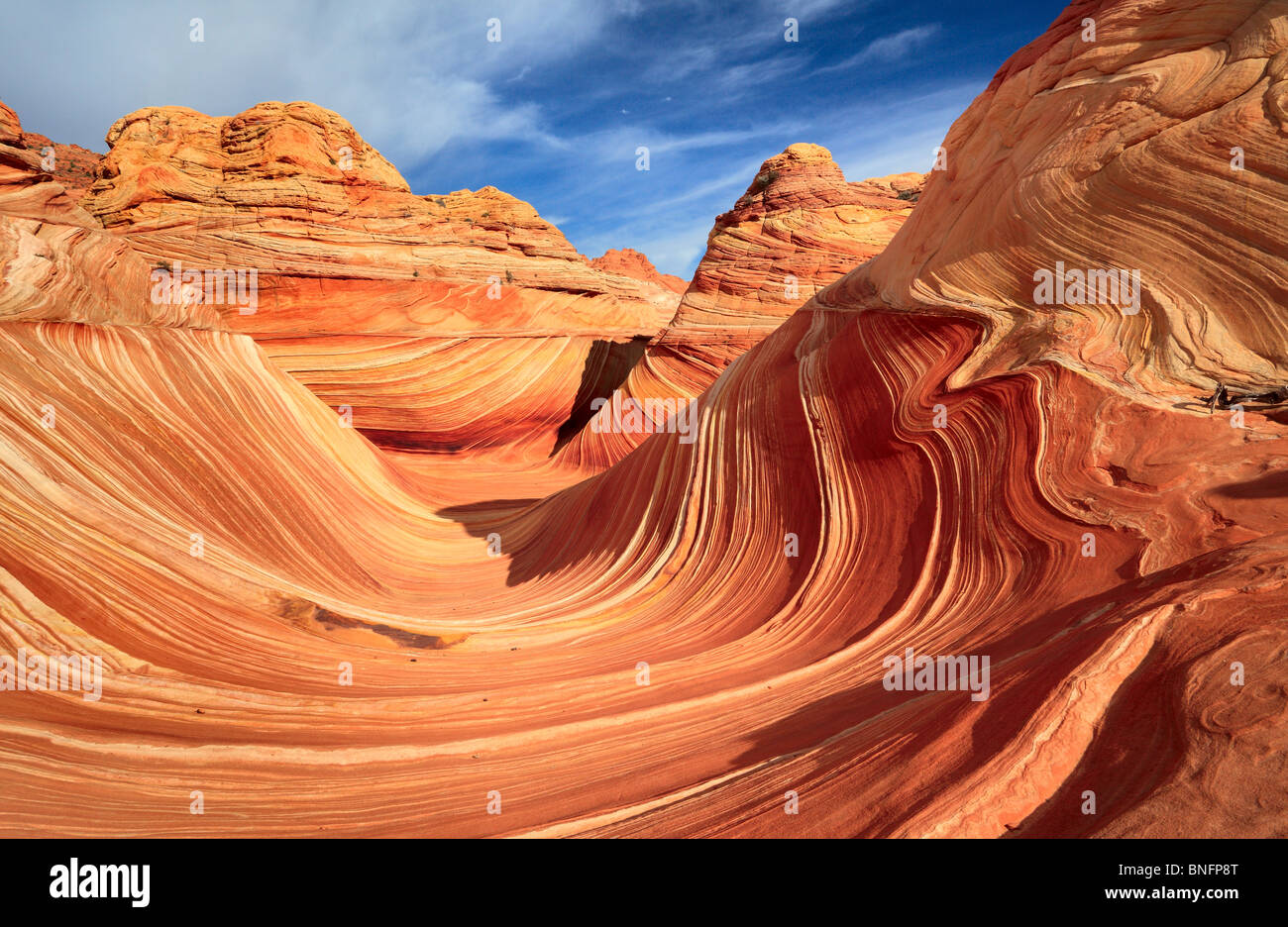 Erosi formazioni arenarie in Vermiglio scogliere monumento nazionale, Arizona Immagini Stock