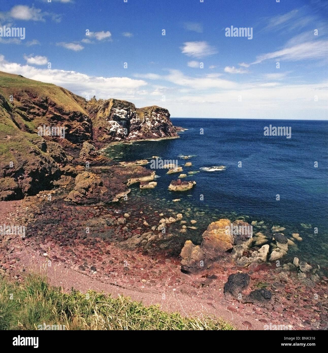 La costa vicino a St Abbs Head, Berwickshire, frontiere, Scozia Foto Stock